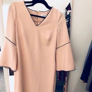 Light Pink Fluted Sleeve Dress w/ Gold Zipper